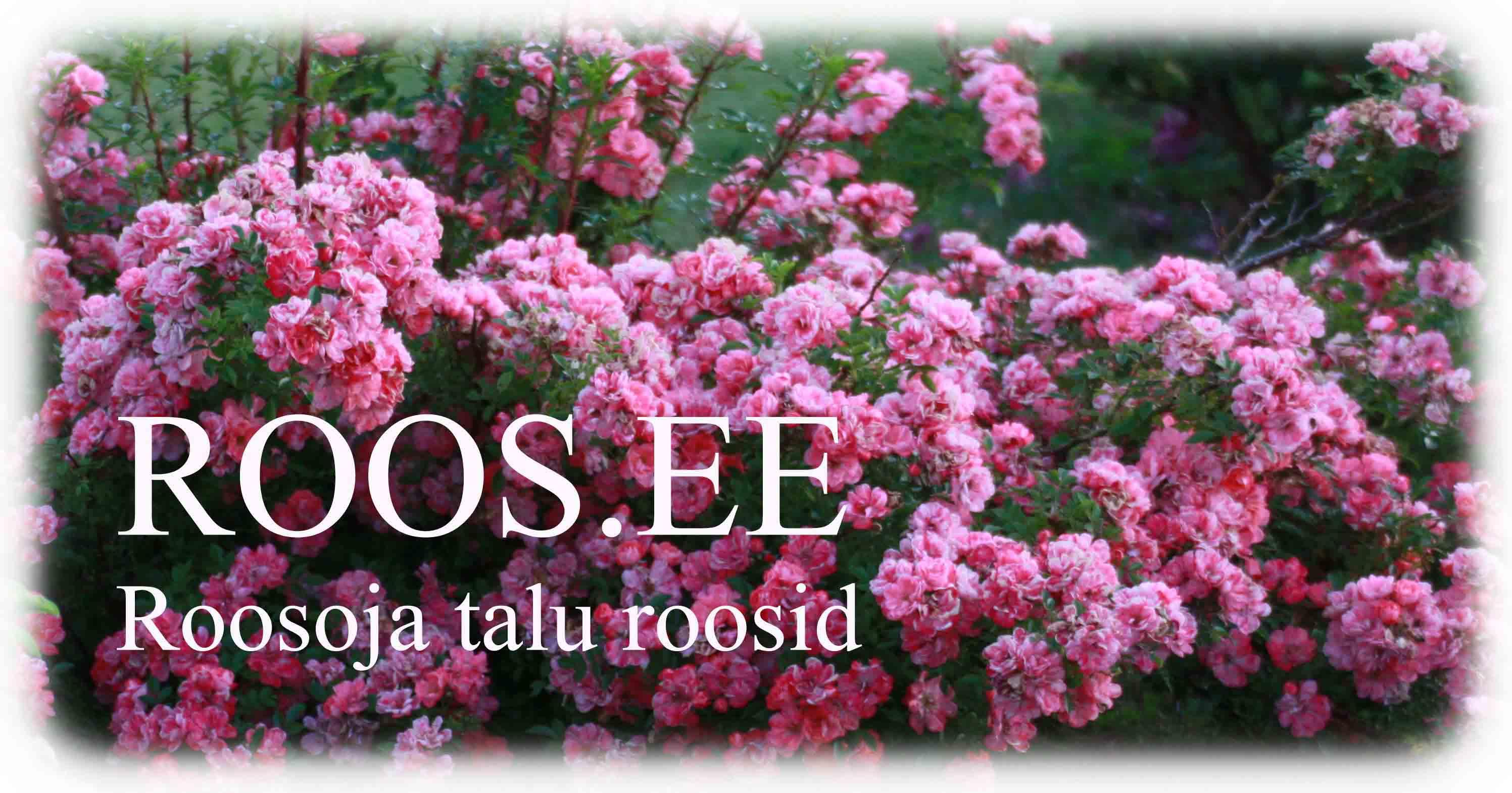 Roosoja talu